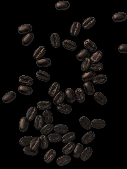 Verde Nero Café - Grain de café de spécialité